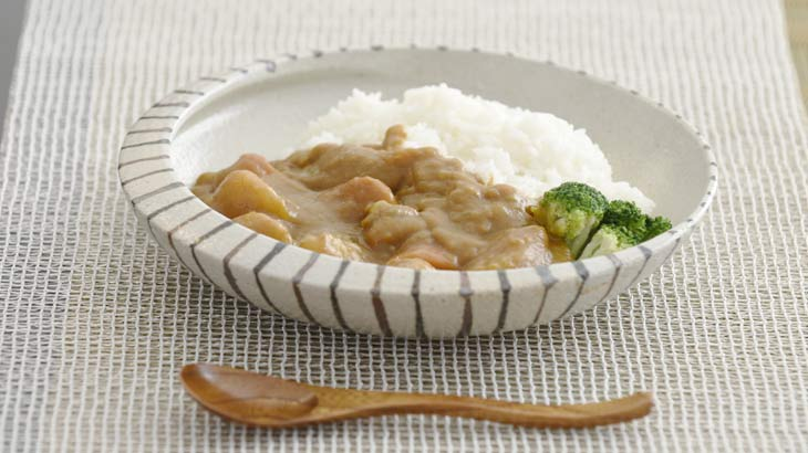 信楽焼のカレー専用皿のイメージ写真