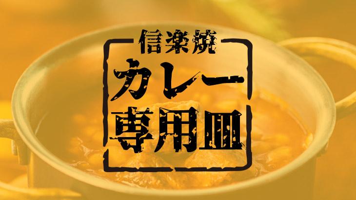 【カレー専用】どう違うの?  カレー皿