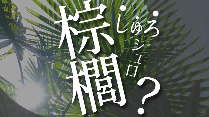 【素材説明】 棕櫚(しゅろ)  とはどんなモノ?