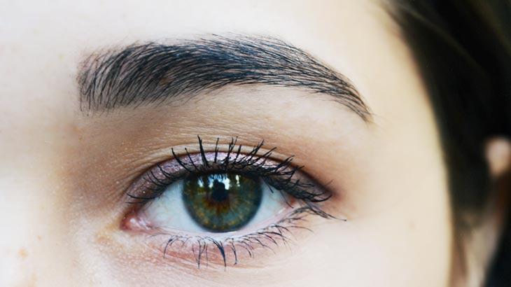目と、眉のイメージ画像