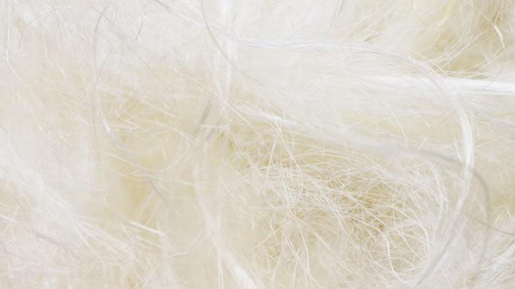 絹糸のイメージ画像