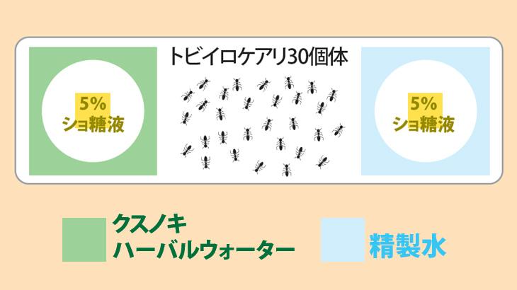 アリの忌避効果試験のイメージ図1