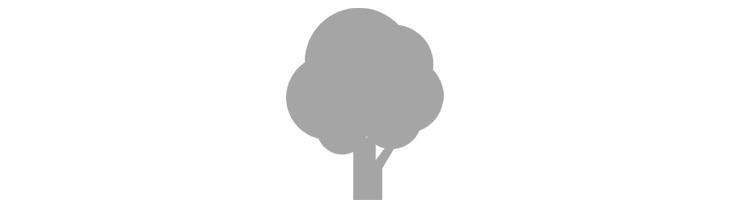 木のイメージアイコン