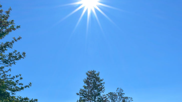 天日干しのイメージ画像